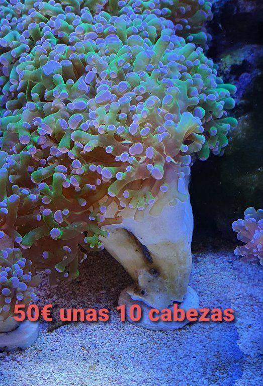 20210118_125232.jpg