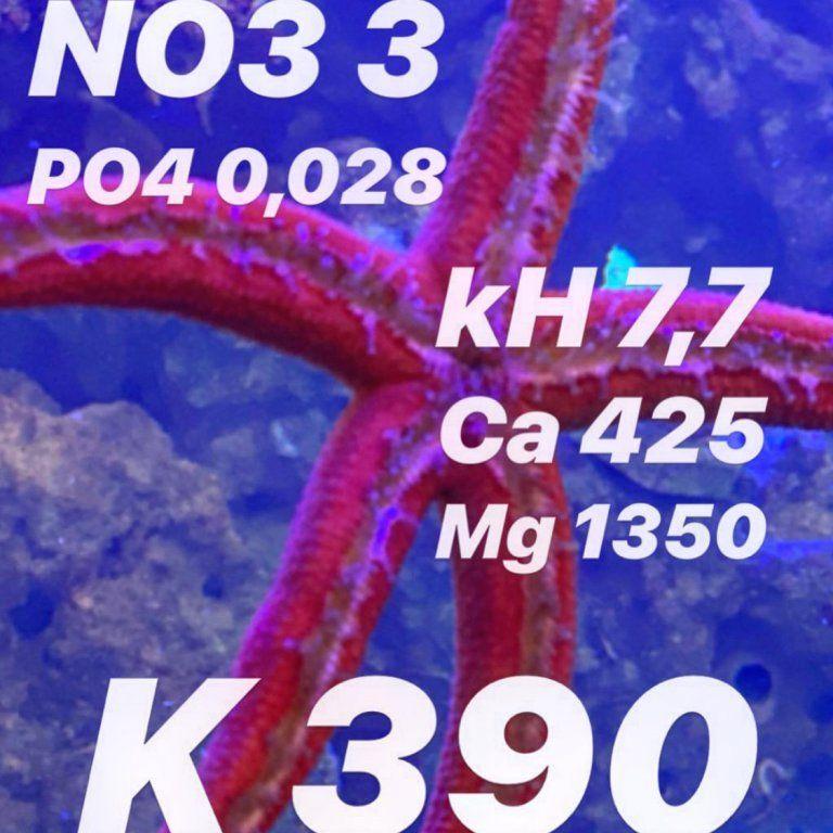 7C484970-4460-4FCF-8E0F-AA8741346FA4.jpeg