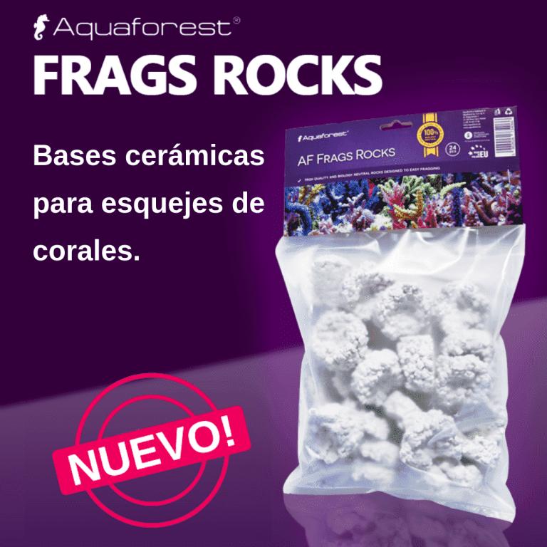 AF FRAGS ROCKS.png