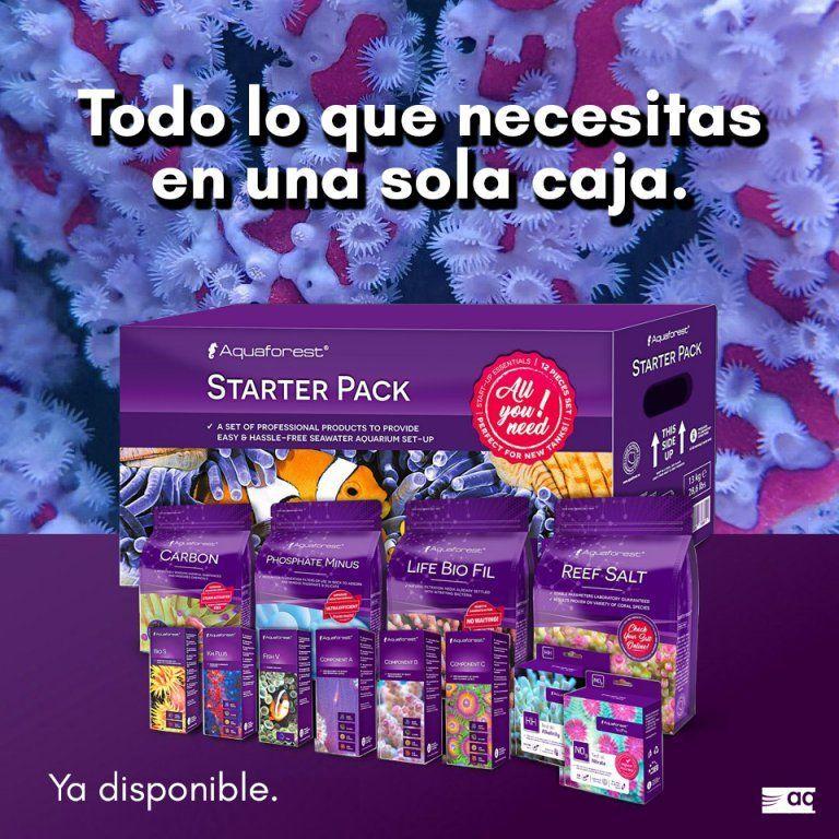 Af Starter Pack - Insta2.jpg