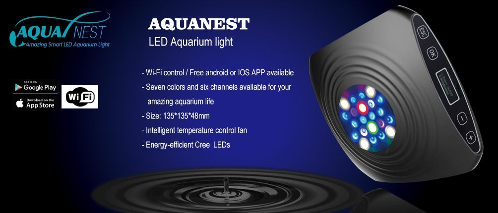 AquaNest-5.jpg