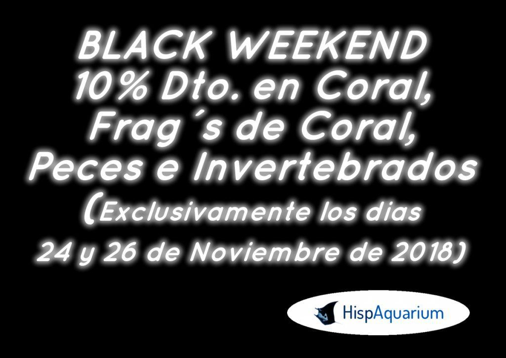 Black Weekend 2018.JPG