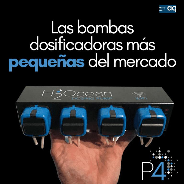bomba3.png