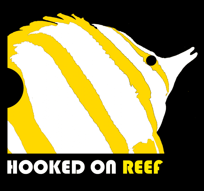 CHELMON HOOKED ON REEF (1).png