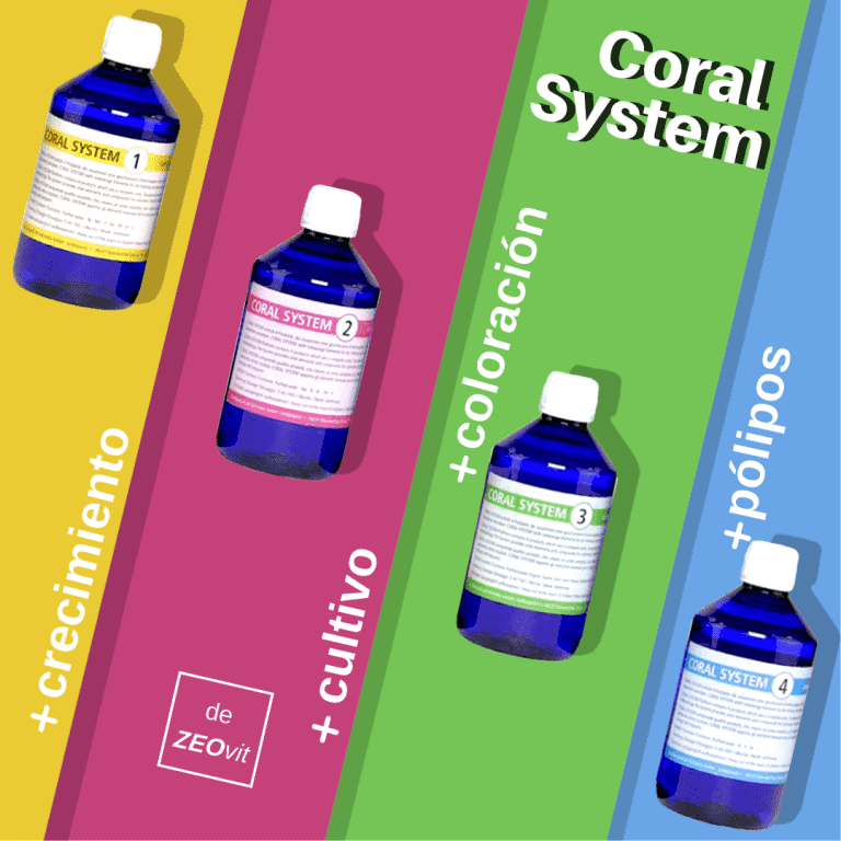 Coral System.png