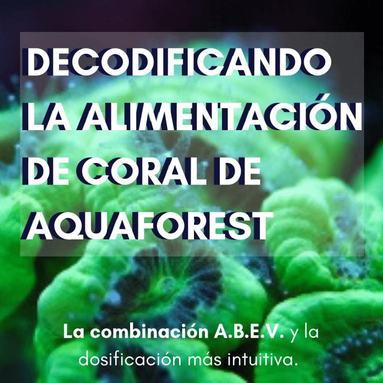 DECODIFICANDO LA ALIMENTACIÓN DE CORAL DE AQUAFOREST.png