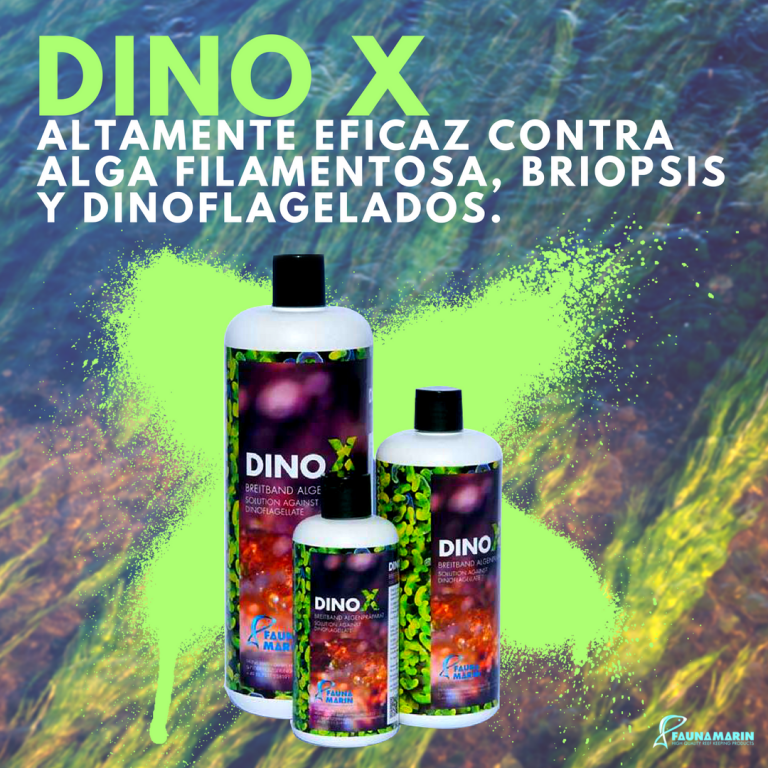 DINO X.png
