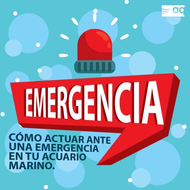 EMERGENCIAS.jpg
