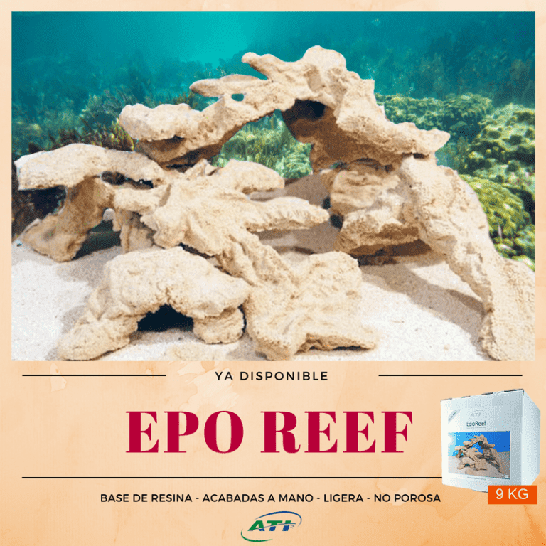 EPO REEF.png
