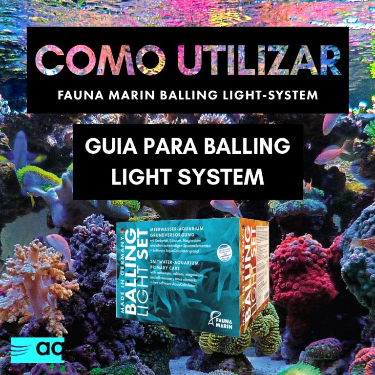 GUIA PARA BALLING LIGHT SYSTEM.png