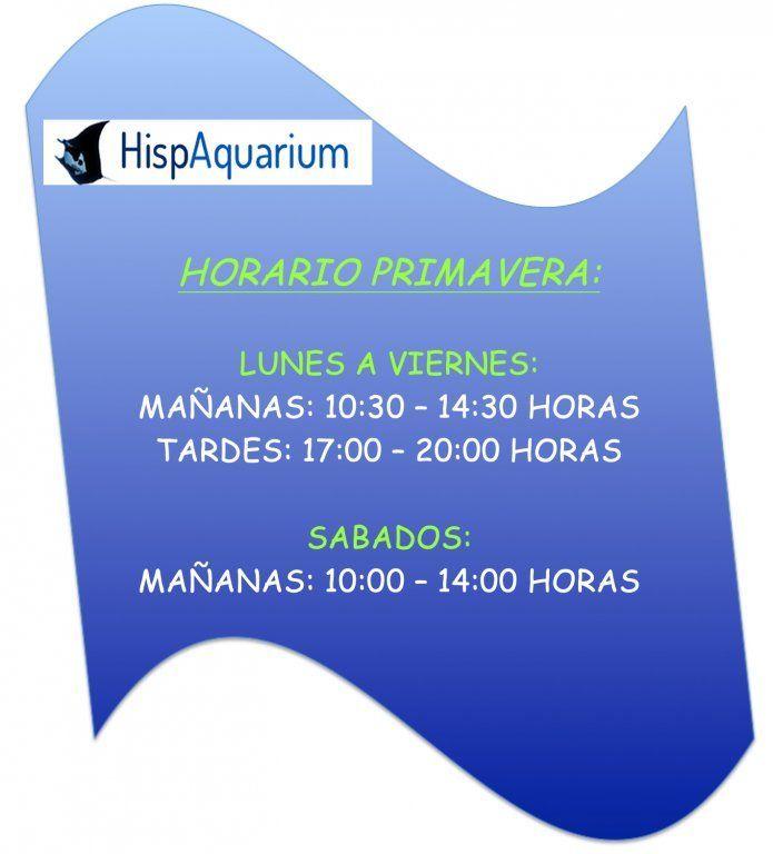 Horario PRIMAVERA.jpg
