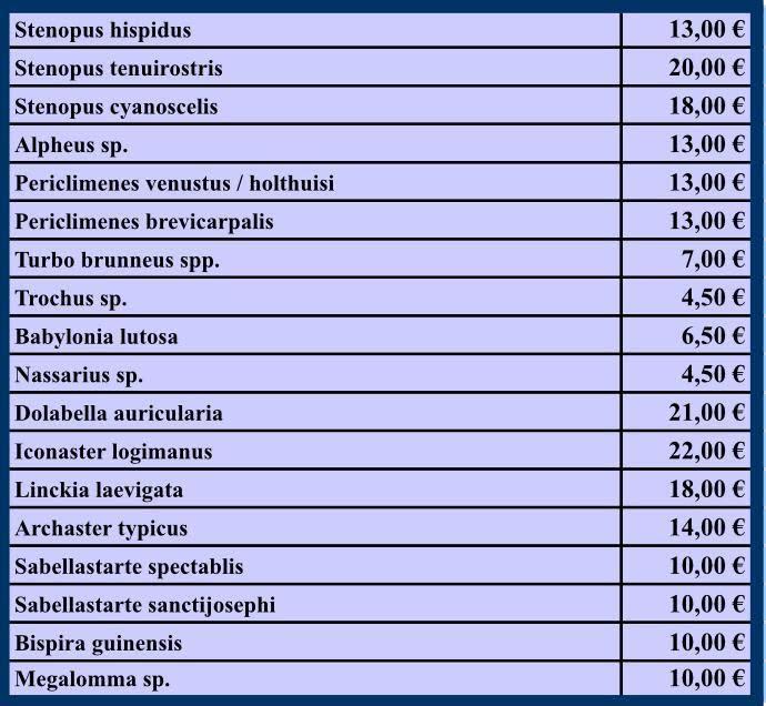 invertebrados septiembre-18.jpg