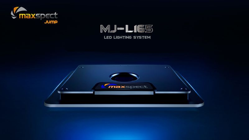 MJL11-2.jpg