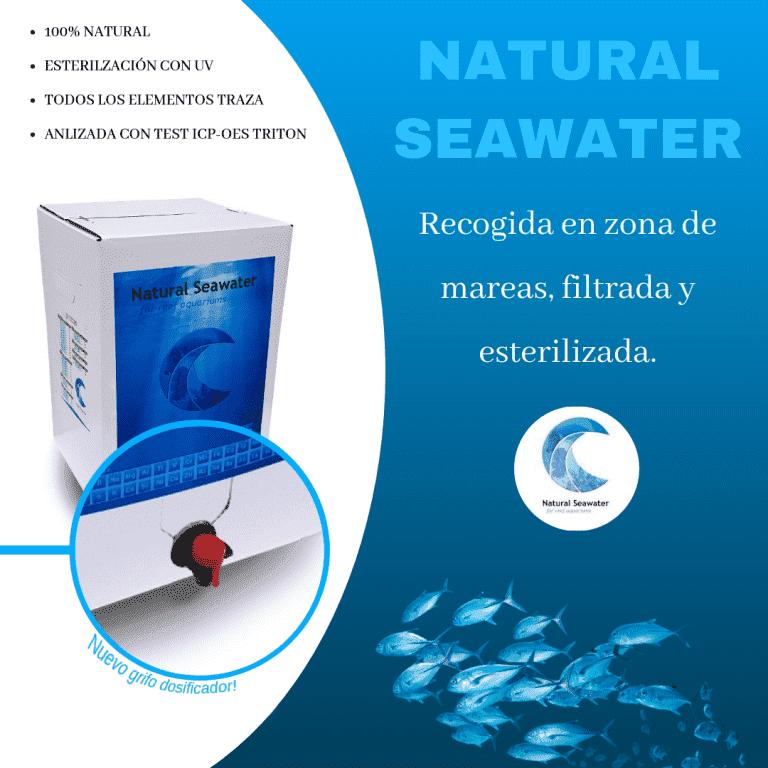 Natural Seawater.png