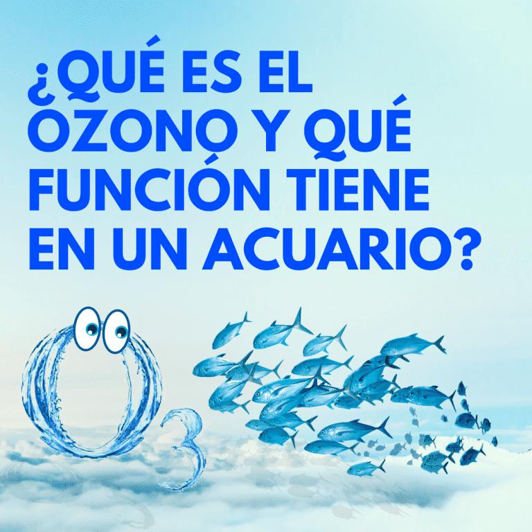 QUÉ ES EL OZONO Y QUÉ FUNCIÓN TIENE EN UN ACUARIO (1).png