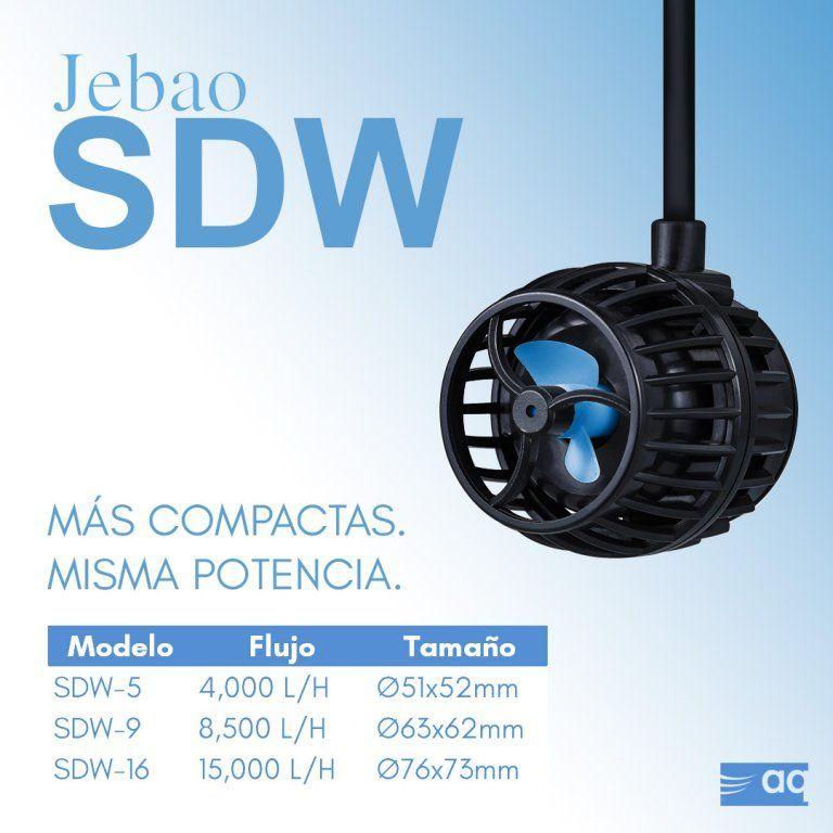 SDW.jpg