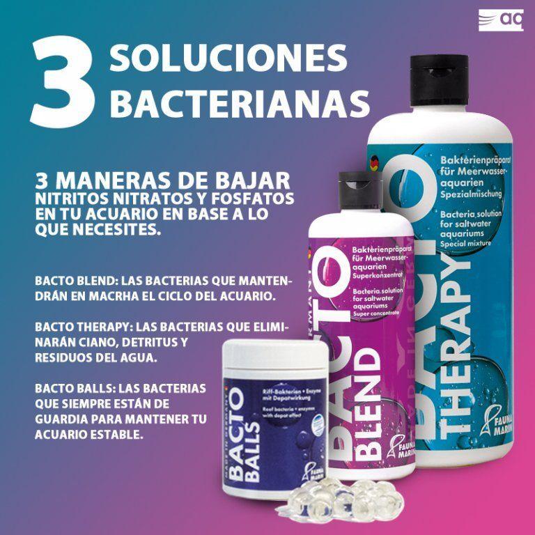 soluciones bacterianas 2.jpg