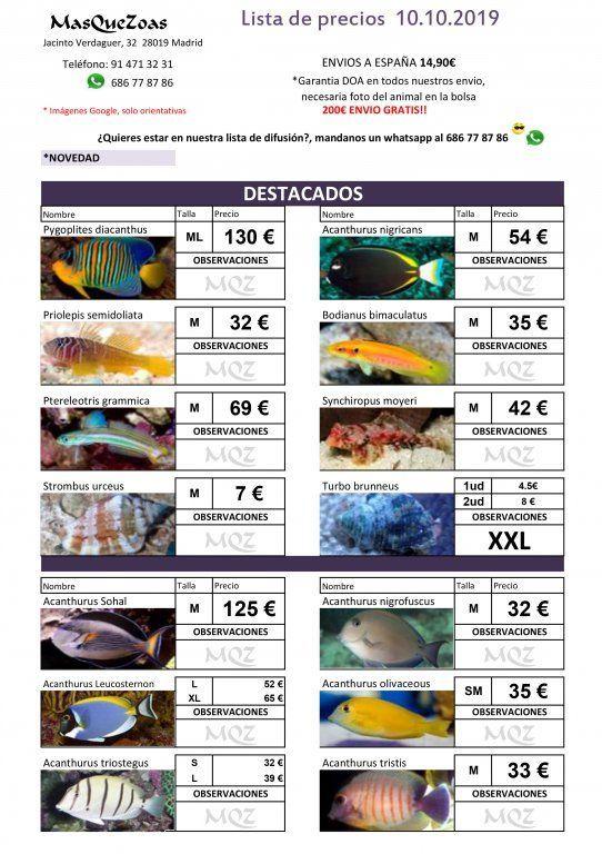 Stocklist - MasQueZoas -10101901.jpg