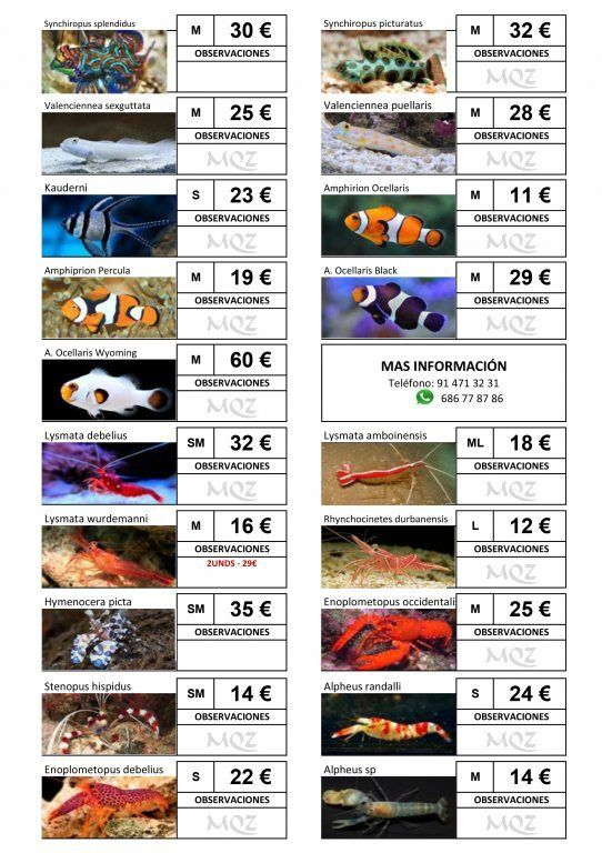 Stocklist - MasQueZoas -10101906.jpg