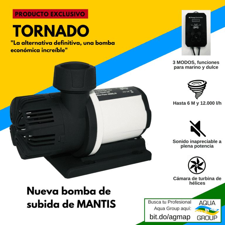 Tornado (1).png