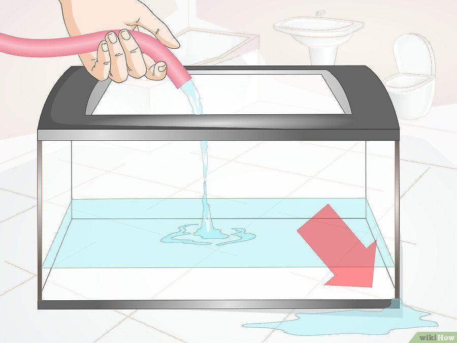 v4-900px-Make-a-Shrimp-Aquarium-Step-7.jpg