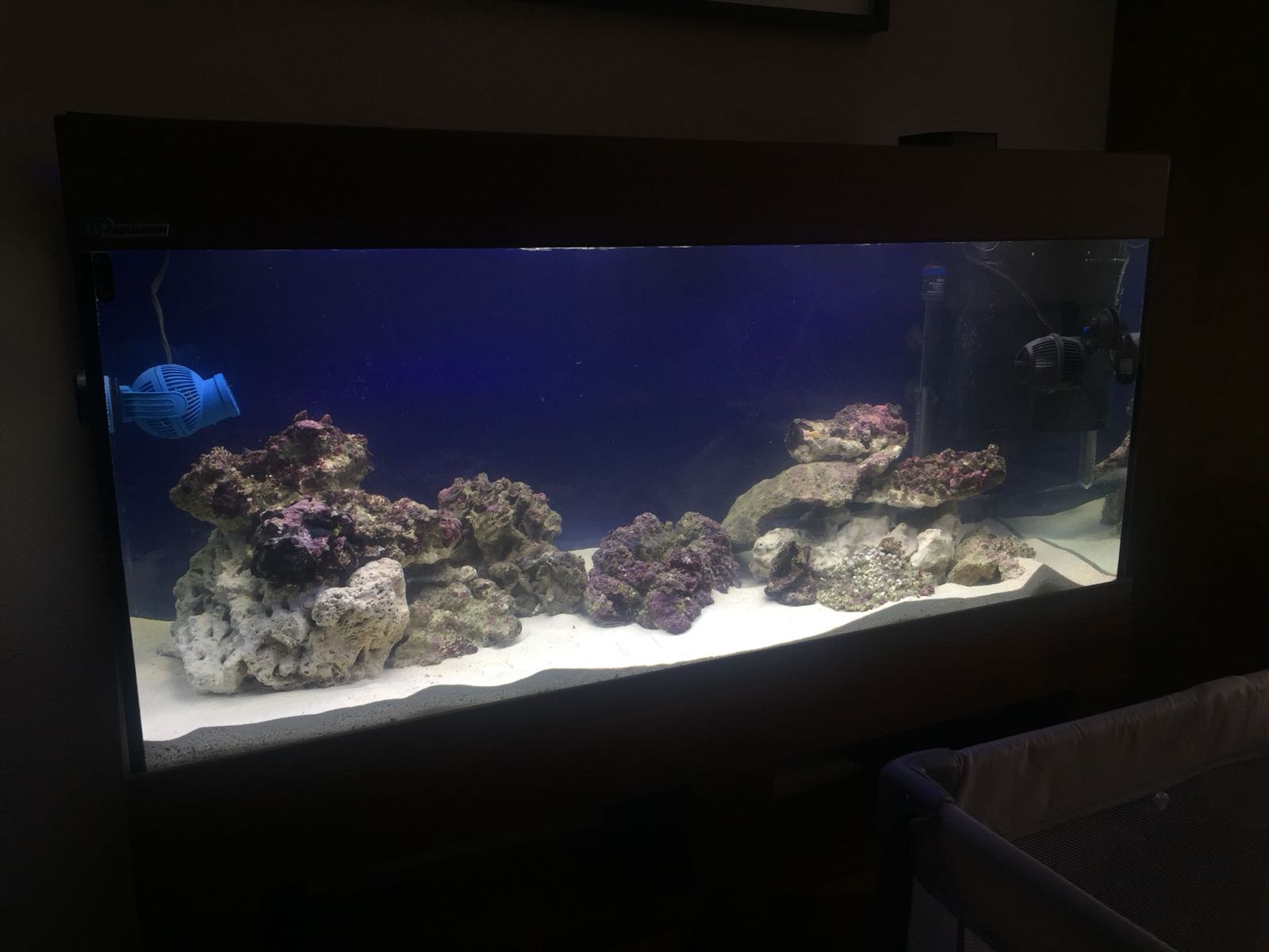 WhatsApp Image 2018-03-06 at 16.37.47 (1).jpeg